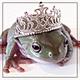 froglady's Avatar